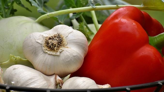 Srpska pijaca: Albanski paradajz, španska salata, kirgistanski pasulj, beli luk iz Kine…