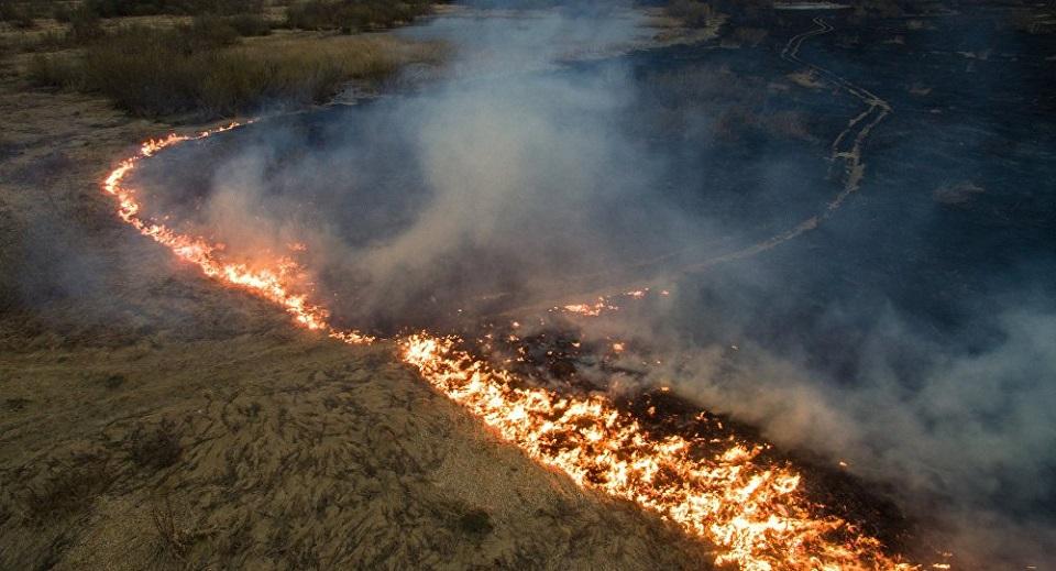 Zelena patrola: Situacija je katastrofalna, u Vojvodini nema ko da gasi požar