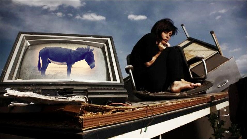 Ja sam konceptualista, okružena sebi sličnima gledačima u magarce i niko nas ne plaća za to