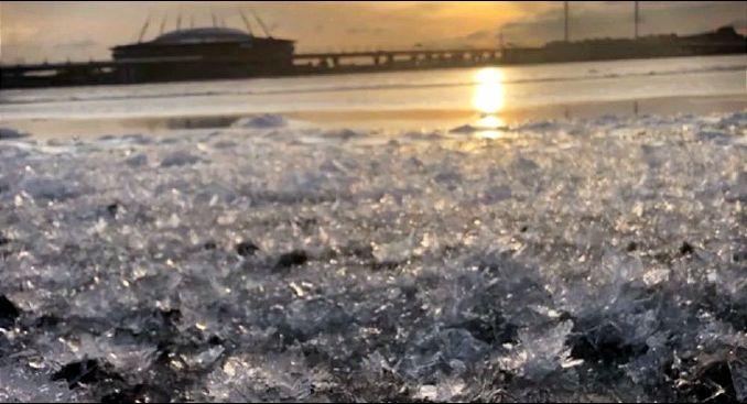 U Sankt Peterburgu procvetali ledeni cvetovi (VIDEO)